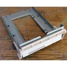 Заглушка для корзины SCSI дисков 55.59903.011 для серверов HP Compaq (Челябинск)