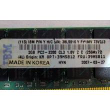 IBM 39M5811 39M5812 2Gb (2048Mb) DDR2 ECC Reg memory (Челябинск)